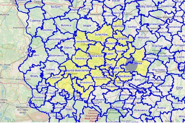 Mapa lubuskich gim zagrożonych ASF, grudzień 2019 r.