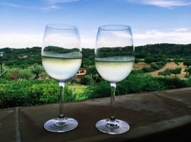 Weißweine (Monte Pinos / Copa Vino Blanco) (10,05€)