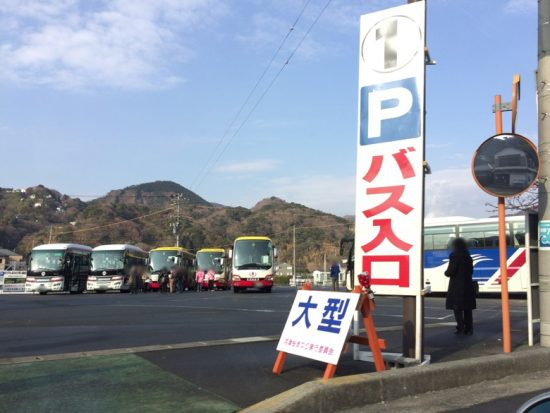 河津桜まつりの混雑 駐車場バスの画像