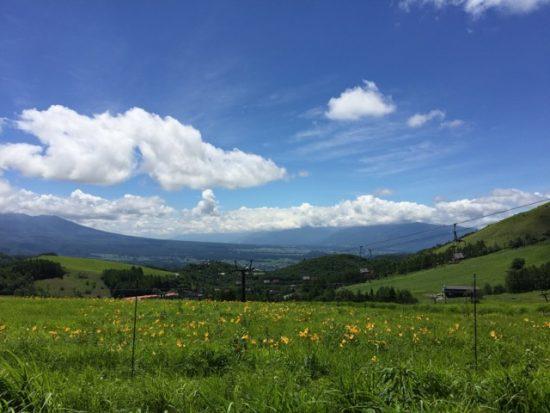 車山高原スキー場リフトとニッコウキスゲ写真画像