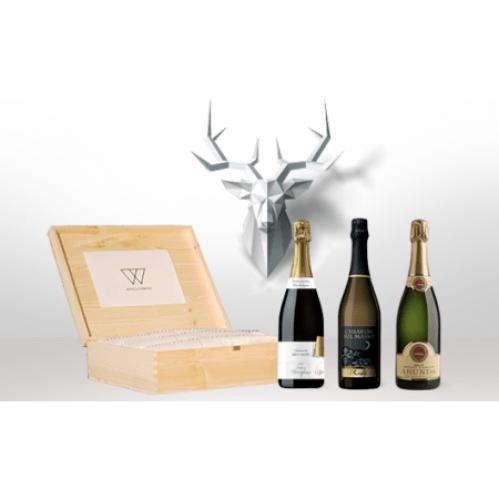 box-natale-winestorming