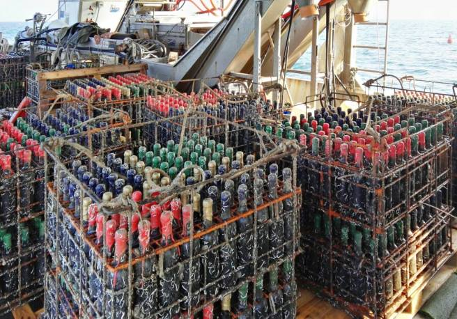 vini-de-mare-affinamento-bottiglie