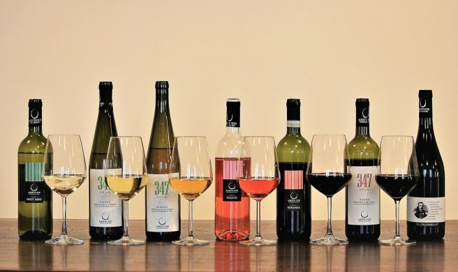 vini-azienda-agricola-valdamonte