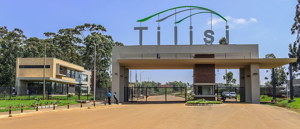 Tilisi mega-city launches green garden homes as research shows immediate health benefits from living beside green spaces