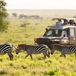 Kenya Flying Tours