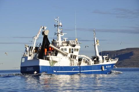 Fiskebåt Ålesund