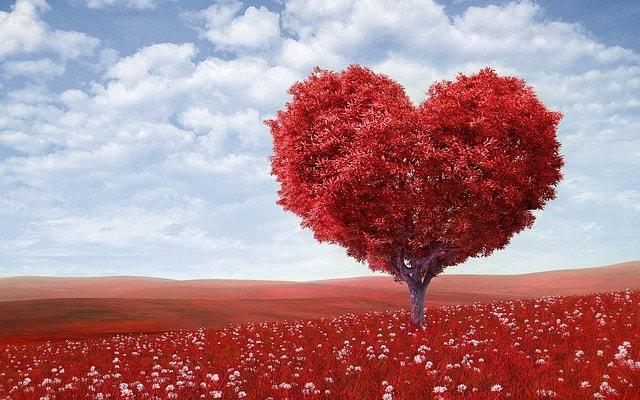 赤いハートの木と青空