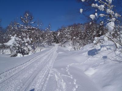 ski hiking3