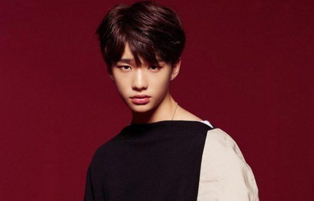 Stray Kids Member Hyunjin Profile