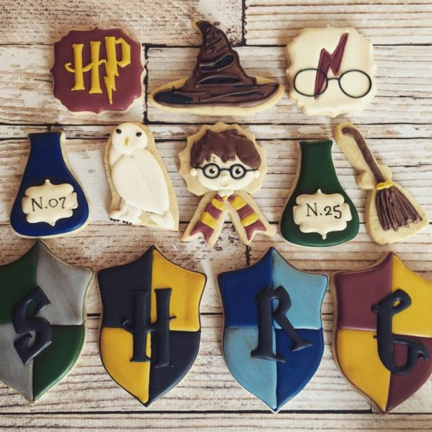 Cute Magnets with Harry Potter Theme