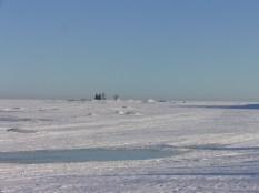 Härligt ute på isen nu, än så länge. Hundarna hade mycket att springa på.