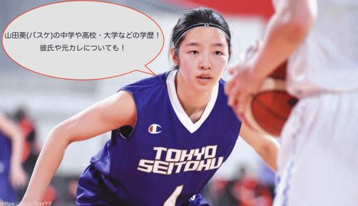 山田葵(バスケ)の中学や高校・大学などの学歴!彼氏や元カレについても!