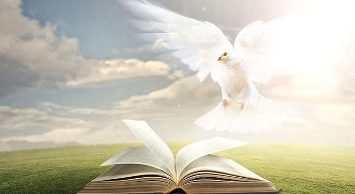 1Иоан. 5:10 Как людям, не имеющем в себе свидетельства, понять, что это такое и как оно появляется в человеке?