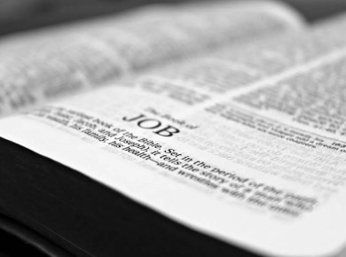 Bible tell us about Job