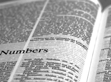 what is the book of numbers about