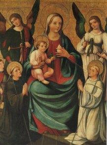 lactation of saint bernard