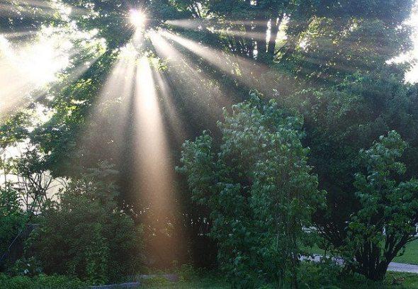 sun, light
