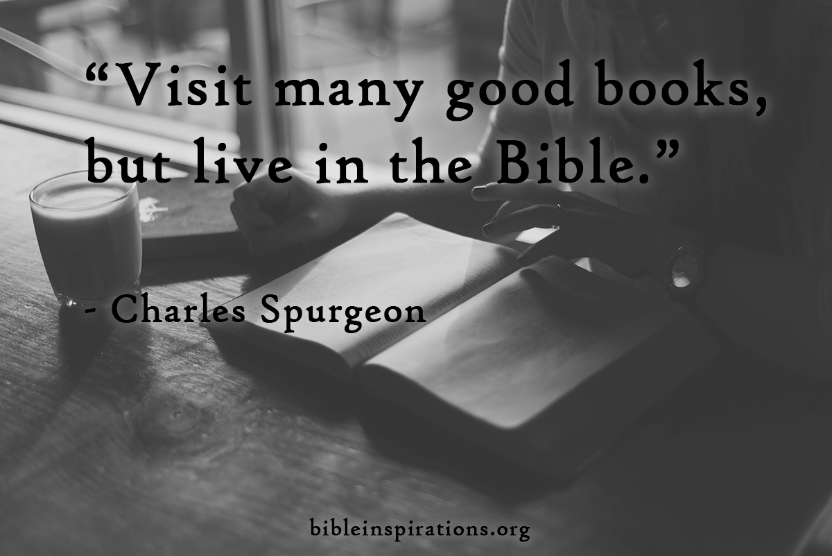 Image result for visit many good books but live in the bible