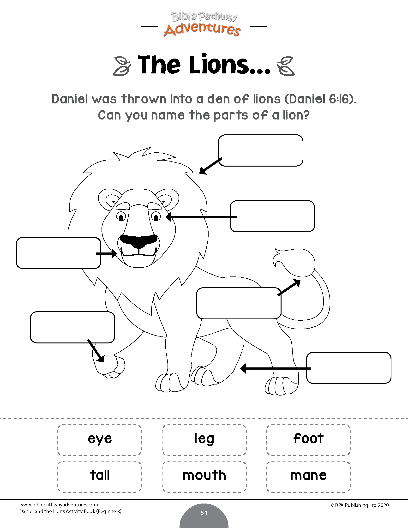Daniel And The Lions Activity Book Beginners Bible