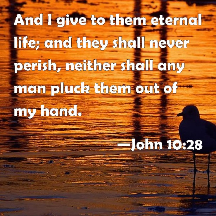 John 10:28 And I give to them eternal life; and they shall never ...