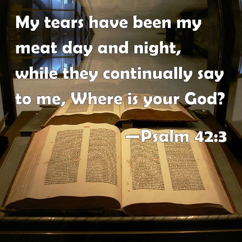"""Résultat de recherche d'images pour """"psalm 42 3"""""""