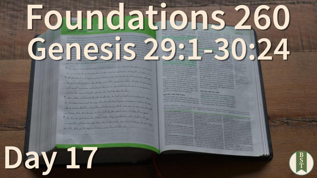 F260 Bible Reading Plan - Day 17