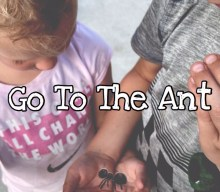 KIDScast#70 Go To The Ant