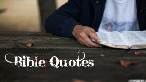 Bible Quotes: 12 Part series