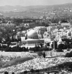 Israel: 'THE' Land Of 'Promise' ( Footage from 1946)