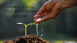 The Parable of Jesus :  Parables in Nature Video Post