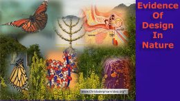 The Evidence of Design in Nature that Evolutionist can't explain away! Video post