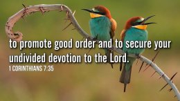 "Thought for February 24th. ""TO SECURE YOUR UNDIVIDED DEVOTION TO THE LORD"""