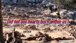 """Thought for April 1st. """"BURNING WITHIN"""""""