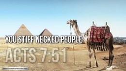 """Thought for April 29th. """"YOU STIFF-NECKED PEOPLE"""""""