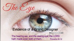 The EYE: Evidence of a Grand Designer