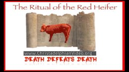 The Ritual of the Red Heifer: Death Defeats Itself