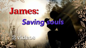 James – Saving Souls . 2 Videos (Bible classes for 14-18yr olds)