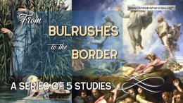 From Bulrushes to the Border - 5 Videos