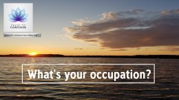 Pause to consider #15: What's your Occupation?