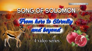 Song of Solomon - 4 Videos