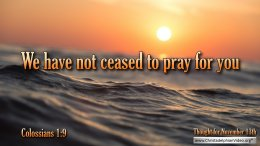 """Daily Readings & Thought for November 13th. """"WE HAVE NOT CEASED TO PRAY FOR YOU, ASKING THAT ..."""""""