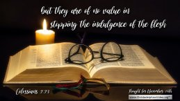 """Daily Readings & Thought for November 14th. """"THEY ARE OF NO VALUE"""""""