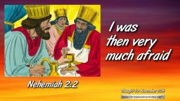 """Daily Readings & Thought for November  15th. """"THEN I WAS VERY MUCH AFRAID"""""""