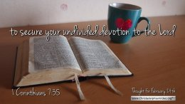 "Daily Readings & Thought for February 24th. ""UNDIVIDED DEVOTION TO THE LORD"""