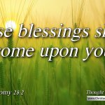 "Daily Readings & Thought for May 11th. ""THESE BLESSINGS SHALL COME"""