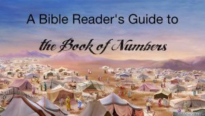 A Bible readers guide to the book of Numbers.