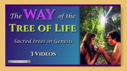 """""""The Way of the Tree of Life"""" Sacred trees in Genesis - 3 Videos"""