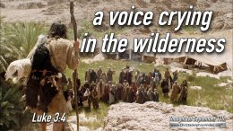 """Daily Readings & Thought for September 11th. """"CRYING IN THE WILDERNESS"""""""