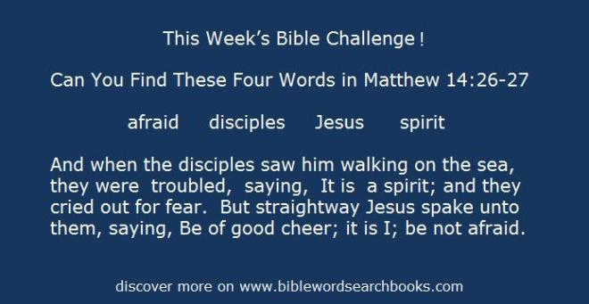 discover more inspirational meaningful fun on www.biblewordsearchbooks.com