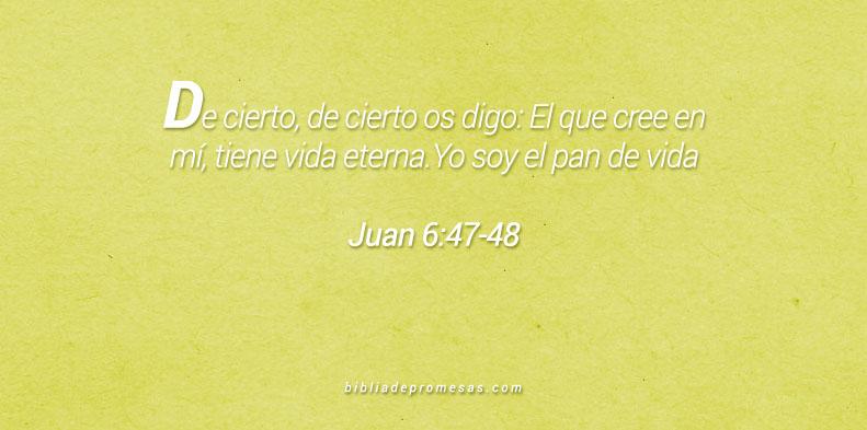 juan 6:47-48